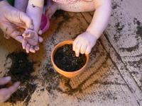 Planting_seeds_024_1